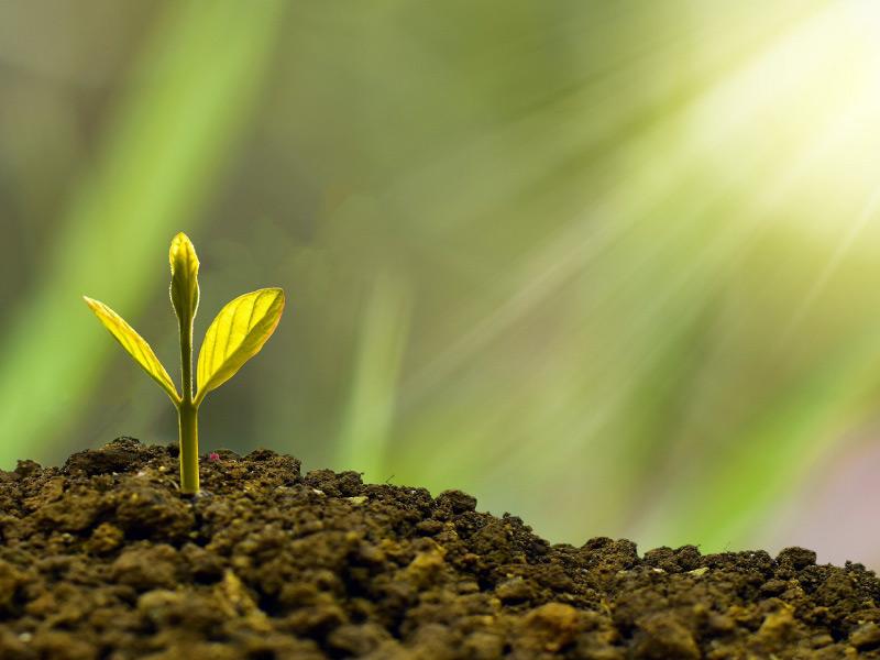 Mobilita' sostenibile: la riforma del recovery plan